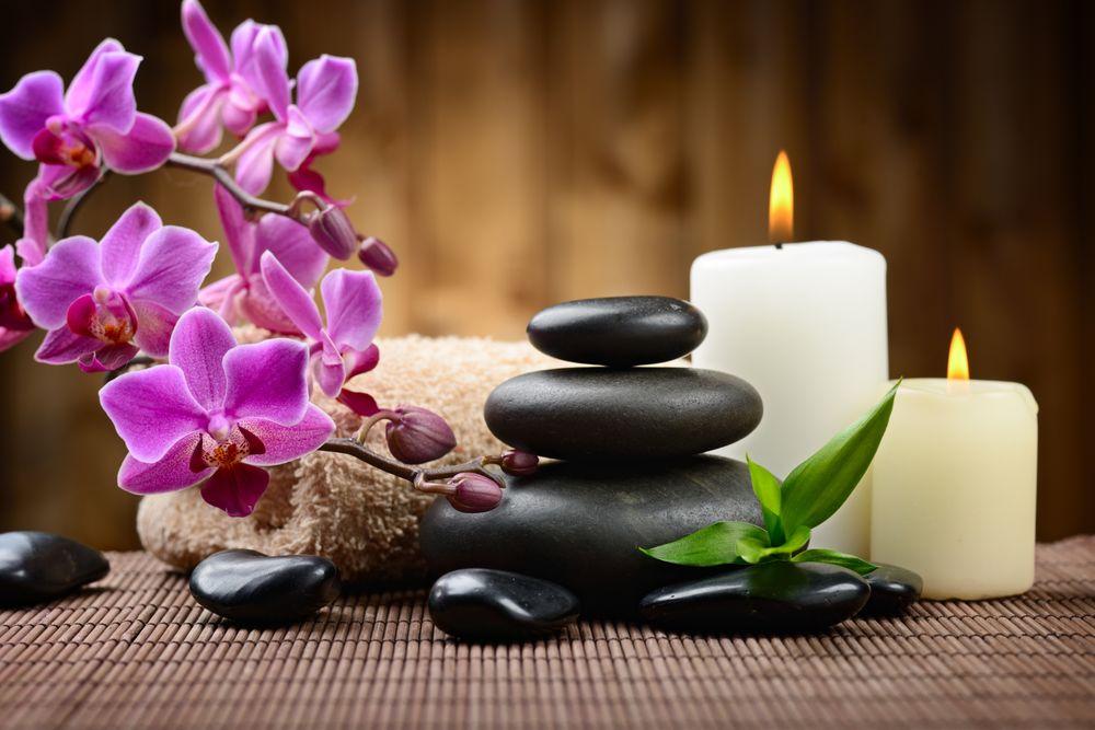 Lotus Terapias